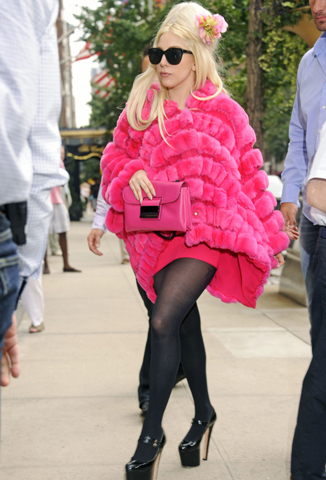 Stars-celebrity-news-animal-rights-and-the-fur-of-Lady-Gaga-image-4