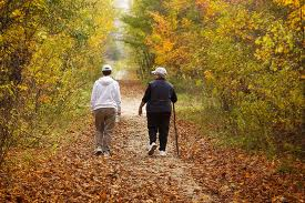 Guide-of-tips-wellness-walking-in-nature-is-good-for-health-image-1