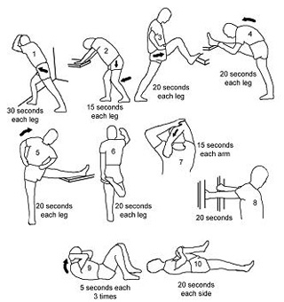 Aerobics wellness of the body with exercises Aerobics 1