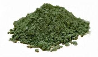 Algae-Klamath