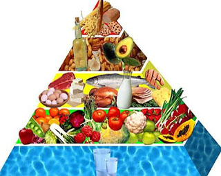 Zone Diet Health and hormonal balance with the Zone Diet