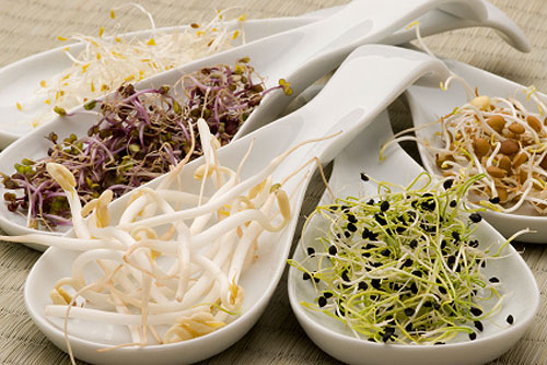Sprouts-do-it-yourself-natural-vitamins-for-wellness-foods-recipes-2