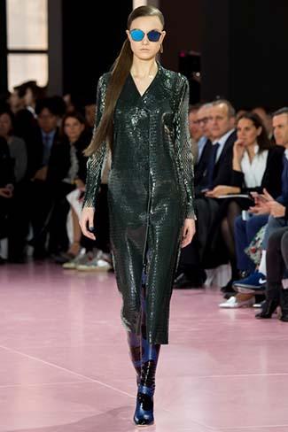 Christian Dior Fall Winter 2015 2016 Womenswear 10