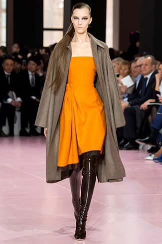 Christian Dior Fall Winter 2015 2016 Womenswear 6